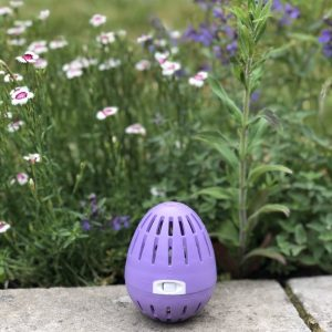 *Limited Edition* 'Summer Floral' ecoegg Laundry Egg
