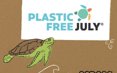 Plastic Free July – Your next steps